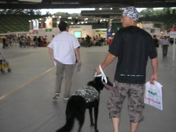 200700901superdog_002