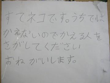 20071004_001