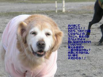 200711_005